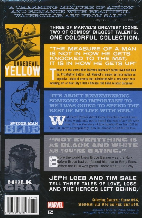 JEPH LOEB AND TIM SALE HC YELLOW BLUE AND GRAY