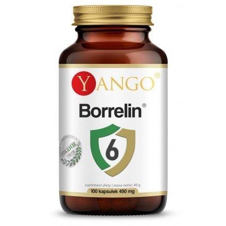Yango Borrelin 6 - 100 kaps