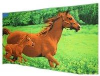 Ręcznik plażowy wz. PL-18 - rozmiar 70x148