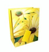 Ozdobne opakowanie, torebka na prezent 26x32 wz. Flower 001