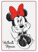 Koc Disney rozmiar 100x140 w pudełku wz. STC 10 B