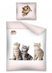 Pościel młodzieżowa 100% bawełna 160x200 lub 140x200 - Trzy koty wz. 2278