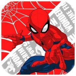 Ręcznik magiczny 30x30 Spider-Man