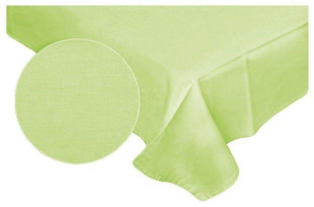 Prześcieradło RUBIN 100% bawełna 160x200 bez gumki wz. seledyn 509/6