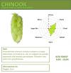 Chmiel Chinook 25g