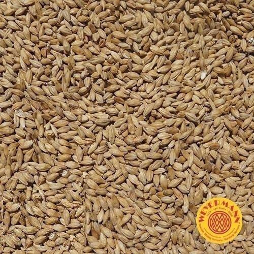 Słód pale ale 5.5-7.5 EBC Weyermann® 1 kg