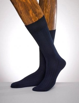 Regina Socks Estera 1546 pánské ponožky