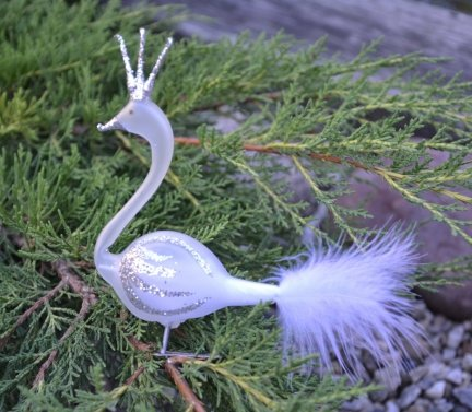 Łabędz biało-srebrny