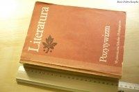 LITERATURA. POZYTYWIZM - Tadeusz Bujnicki 1989