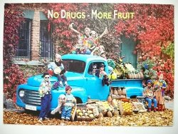NO DRUGS - MORE FRUIT