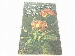 ZIMMERPFLANZEN RICHTIG PFLEGEN - Hermann Holm 1979
