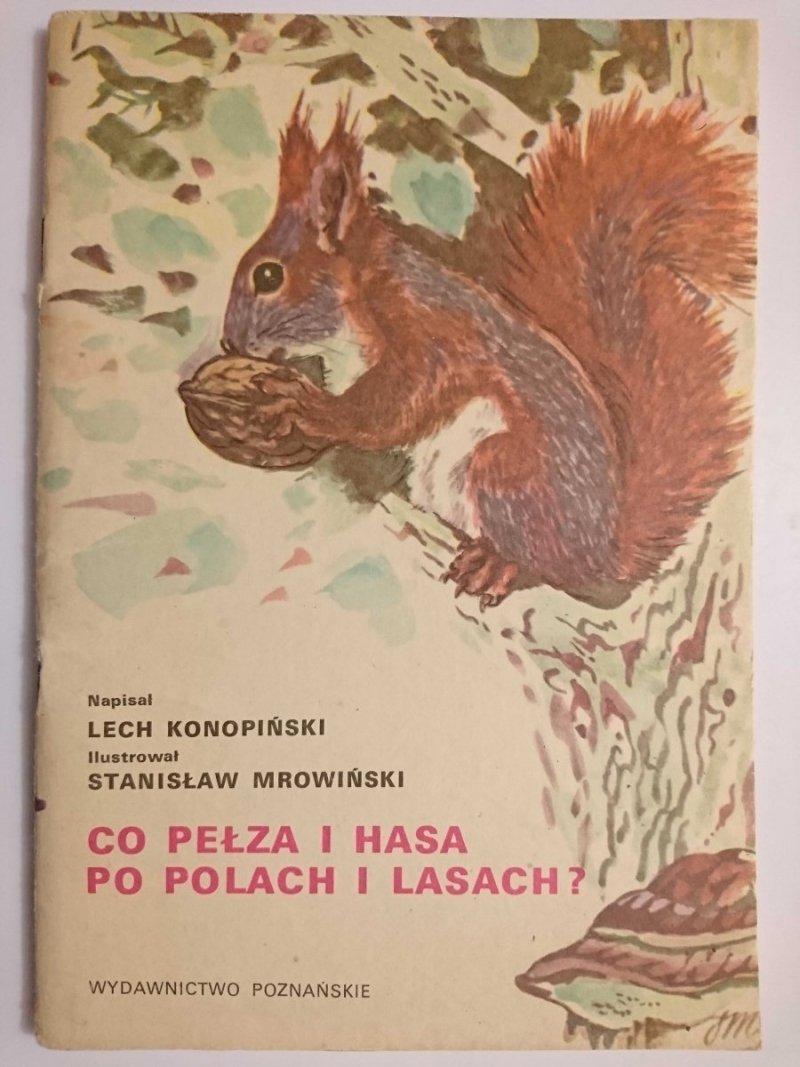 CO PEŁZA I HASA PO POLACH I LASACH? - Lech Konopiński 1985