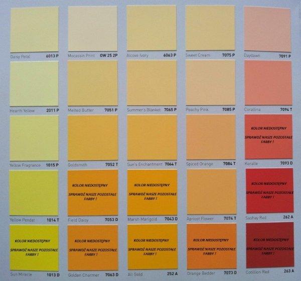 GIOLLI PAINT - 2,5L (biała farba winylowo-akrylowa - wewnętrzna z możliwością barwienia)