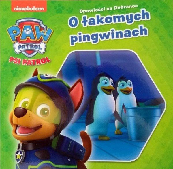 Psi Patrol O łakomych pingwinach