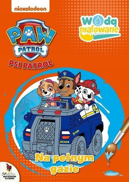 Psi Patrol Wodą malowane 5 Na pełnym gazie
