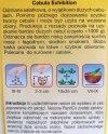 Cebula Exhibition nasiona Plantico opakowanie