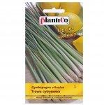TRAWA CYTRYNOWA nasiona 0,1 g PLANTICO