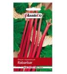 Rabarbar LIDER nasiona 0,5g Plantico