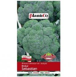 BROKUŁ SEBASTIAN nasiona warzyw PlantiCo 2g