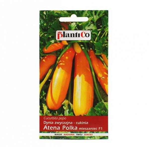 Cukinia pomarańczowa ATENA POLKA F1 nasiona 2 g