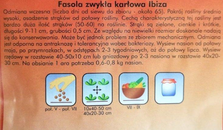 Fasola szparagowa zielona IBIZA nasiona 40 g PLANTICO