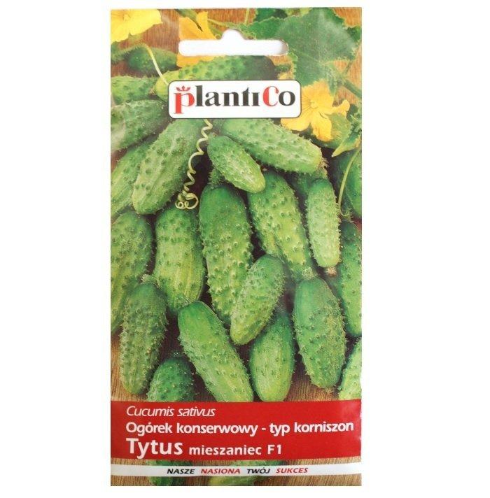 Ogórek Tytus Nasiona 3g Plantico