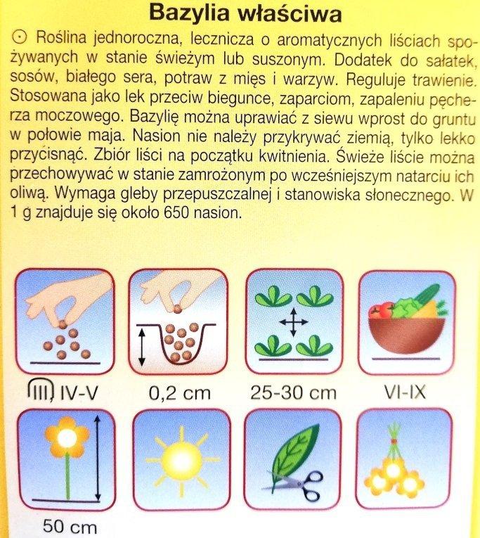 Bazylia właściwa nasiona Plantico
