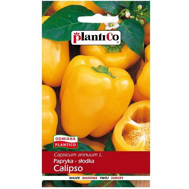 Papryka Calipso nasiona
