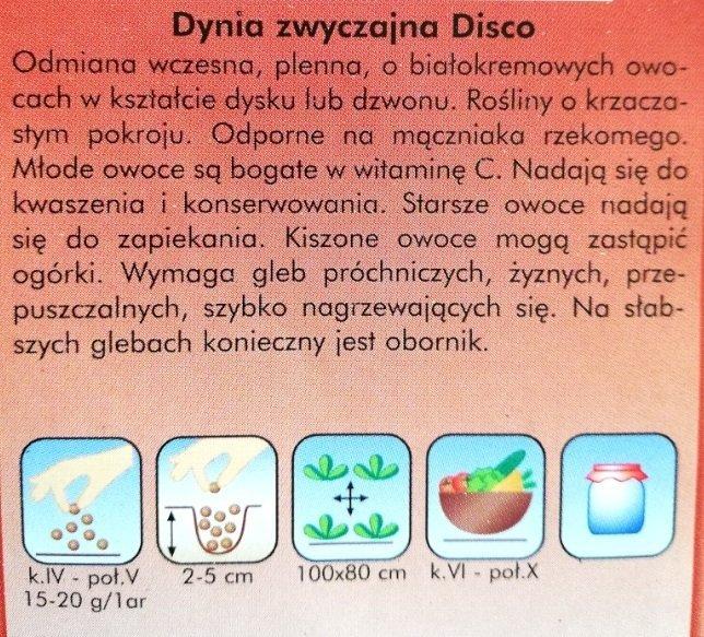 Patison disco nasiona Plantico