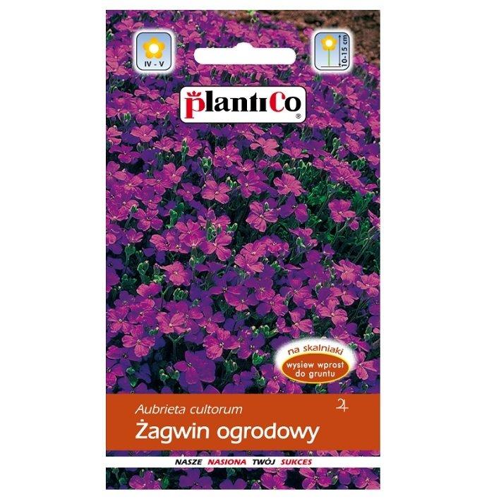 Żagwin ogrodowy nasiona Plantico