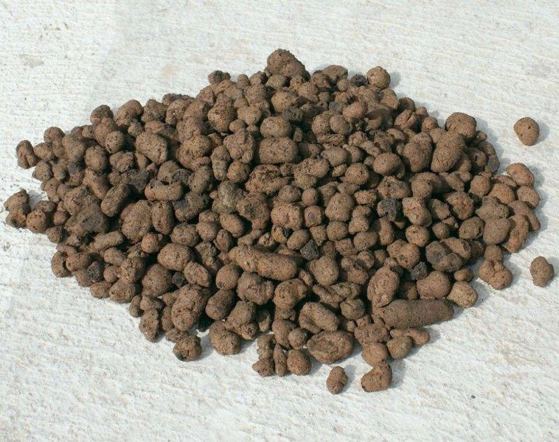 Keramzyt gruby 8-16 mm jakość HORTIGRUNT