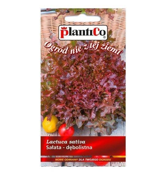 Sałata dębolistna Redin nasiona Plantico