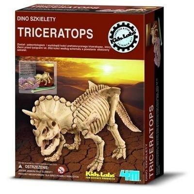 Wykopaliska Triceratops - Dino szkielet
