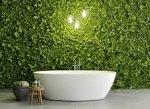 Ogród wertykalny w łazience – jesteśmy na TAK!