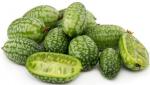 5 najlepszych odmian ogórka na sałatki, mizerię i kanapki