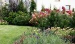 Jak urządzić ogród tanim kosztem?
