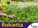 Microgreens - Rokietta siewna 2g