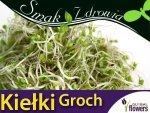Nasiona na Kiełki - Groch 50g