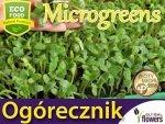 Microgreens - Ogórecznik lekarski (Borago officinalis) 20g