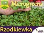 Microgreens - Rzodkiewka czerwona 5g