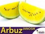 Arbuz Janosik Kawon Żółty (Citrullus vulgaris) 0,5g+0,25g