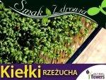 Nasiona na Kiełki - Rzeżucha - (Lepidum sativum)