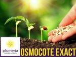 OSMOCOTE Exact Standard - Nawóz uniwersalny długo działający 5-6 m-cy 100g