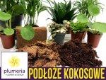 Podłoże kokosowe prasowane - substrat do roślin 330g/4 litry