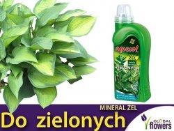 Agrecol Nawóz Mineral Żel do roślin zielonych 0,25l