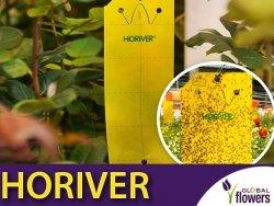 HORIVER żółte tablice lepowe (25x10cm) 10 sztuk
