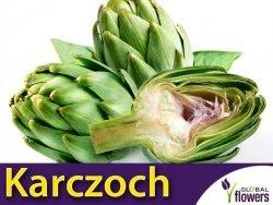 Karczoch 'Vert de Provence' (Cynara scolymus) 1g
