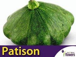Dynia Patison zielona 'Gagat' (Cucurbita pepo) 3g