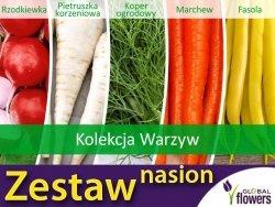 Kolekcja Warzyw Polskich (zestaw 5 gatunków) nasiona