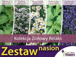 Kolekcja Ziołowy relaks (zestaw 5 gatunków ziół) nasiona